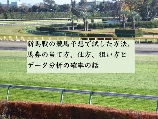 新馬戦の競馬予想で試した方法。馬券の当て方、仕方、狙い方とデータ分析の確率の話