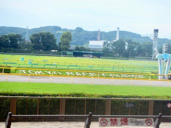 馬場状態は、競馬の有利不利を生む。雨降って、稍重・重馬場・不良馬場と湿るのは簡単。芝ダート、良馬場に乾くには時間がかかる傾向