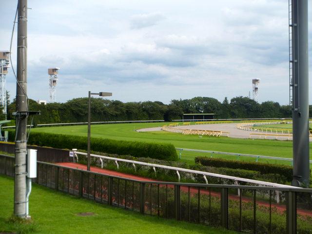 武士沢友治騎手の300勝が待ち遠しい。ゴスホークケン産駒・マルターズアポジーで小倉大賞典(小倉競馬場・芝1800m)を勝って、あと1勝