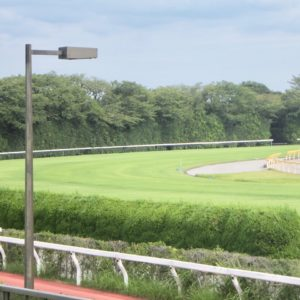馬券初心者は、JRA競馬場で内枠不利な特徴・傾向のあるコースデータを調べて覚えて予想したほうが良い