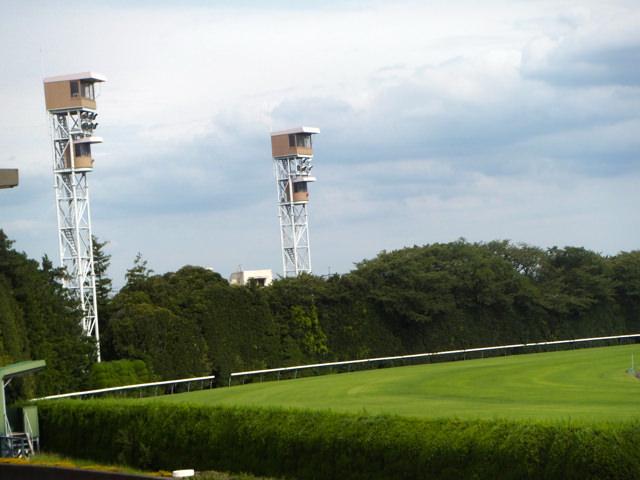 京都大賞典2019競馬予想に。過去の結果から1〜3着馬の前走データをレース映像分析【傾向・追い切り・オッズ】