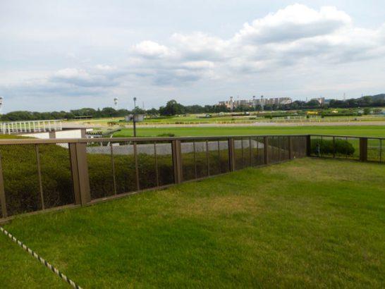 競馬場は屋外にしかない。馬場状態は、良馬場、稍重馬場、重馬場、不良馬場を行ったり来たり