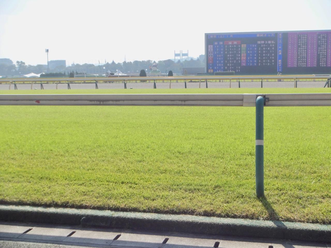 馬場状態は、競馬の有利不利を生む。雨降って、稍重・重馬場・不良馬場 ...
