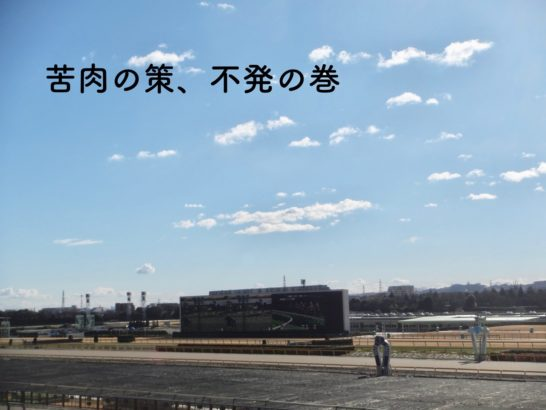 競走馬検索で、元から地方競馬にいるの馬を検索できない