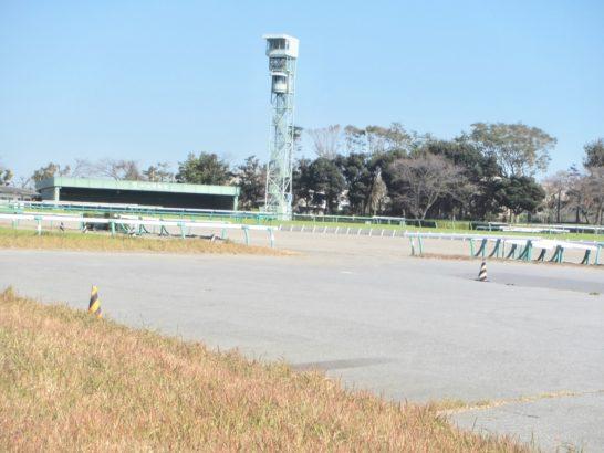 競馬初心者は、JRAの競馬場で内枠が不利なコースを覚える