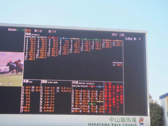 競馬初心者な頃のデータ競馬と競馬本。的中率、回収率2