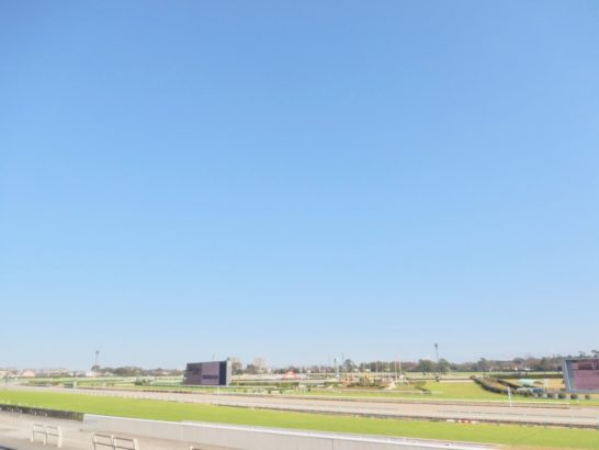 春になると強風の中で競馬が行われたり。馬場状態に影響します