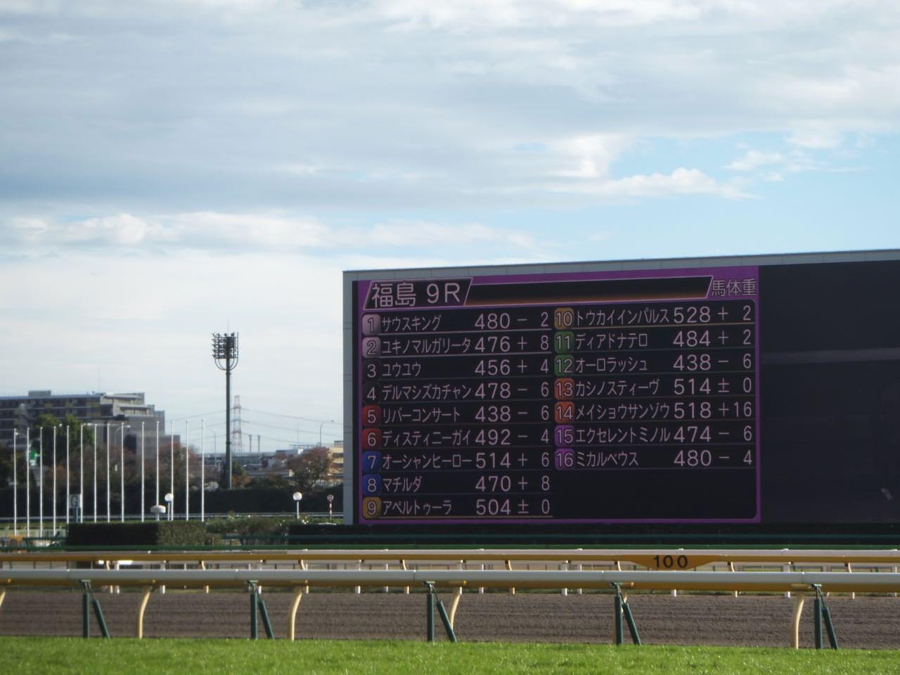 レパードステークス2019競馬予想に。過去の結果から1〜3着馬の前走データをレース映像分析【傾向・追い切り・オッズ】