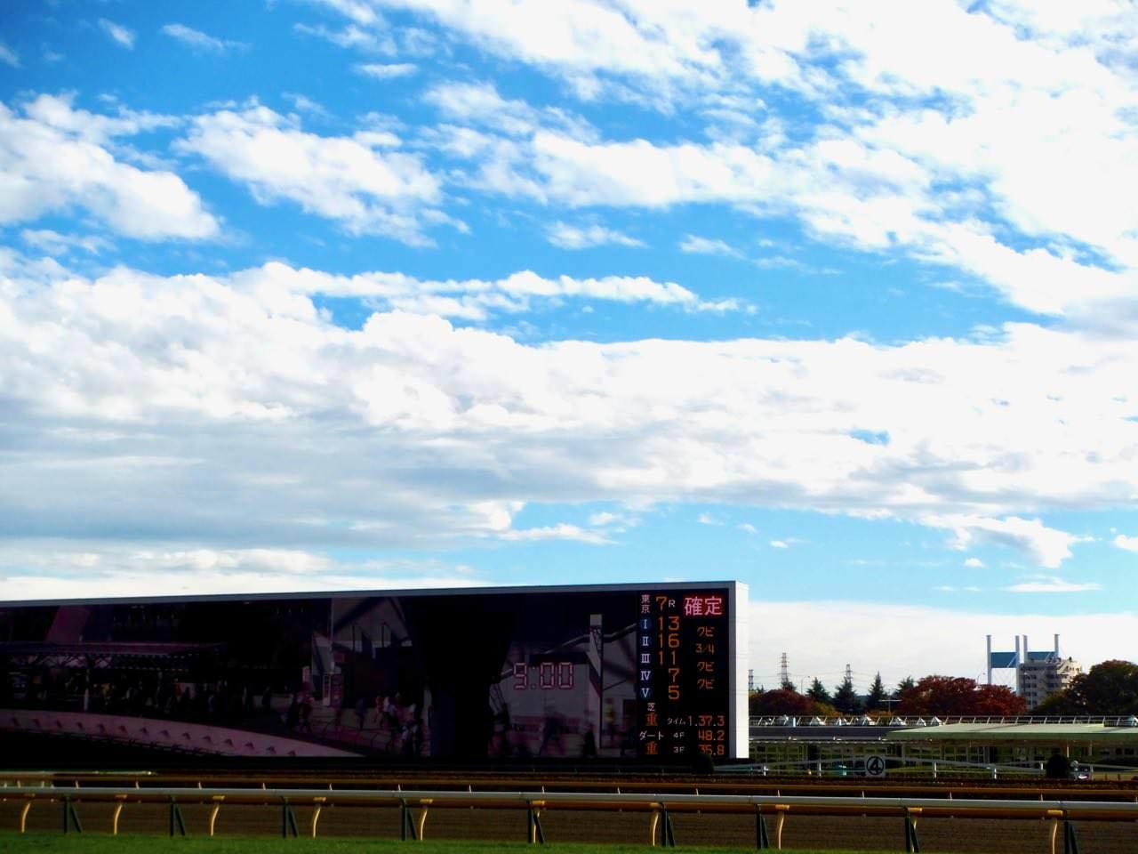小倉記念2019競馬予想に。過去の結果から1〜3着馬の前走データをレース映像分析【傾向・追い切り・オッズ】