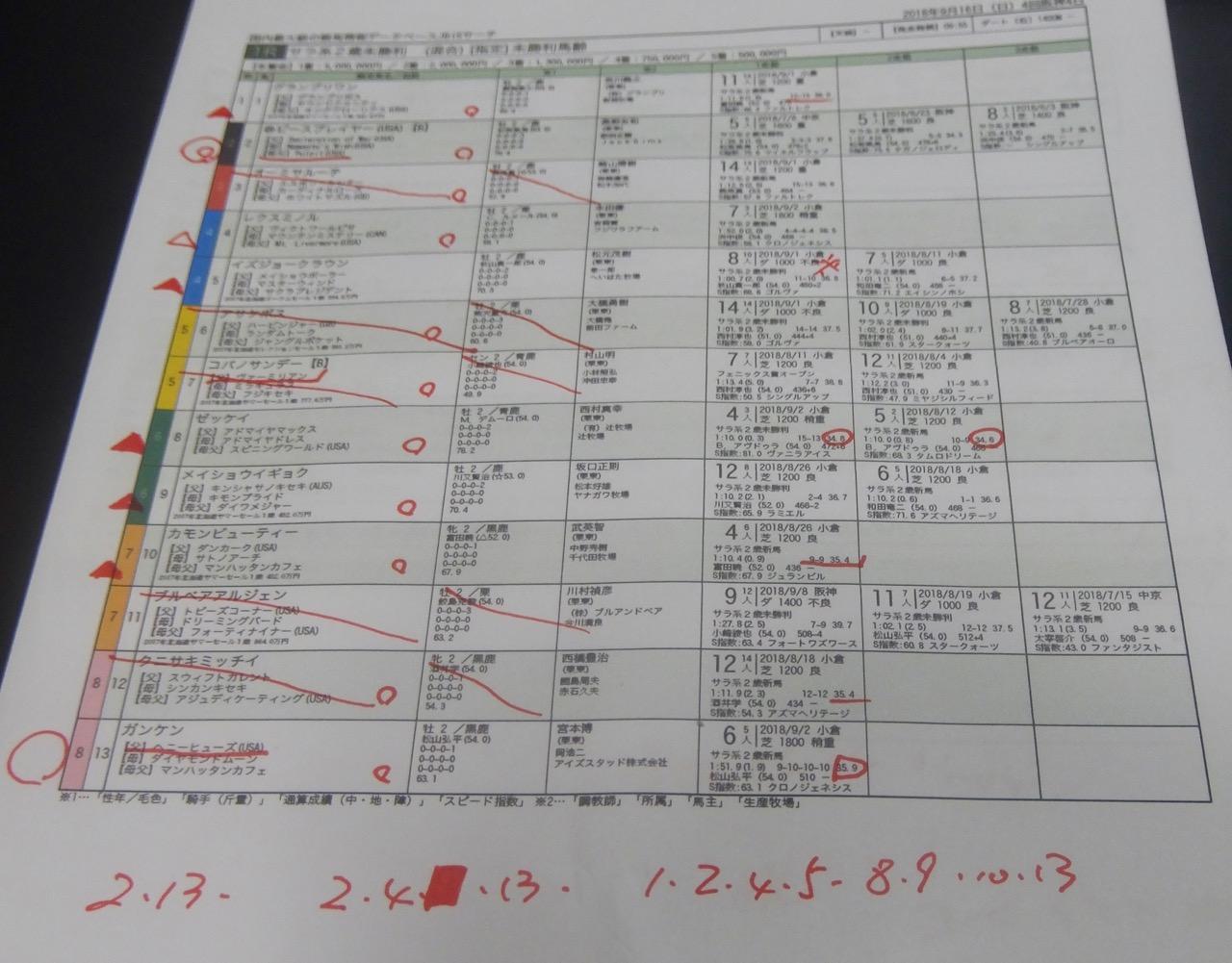 阪神1レース、2歳未勝利(ダート1400m)競馬予想。馬券本命、ヘニーヒューズ産駒ガンケン(松山弘平騎手、宮本博厩舎)2018.9.16