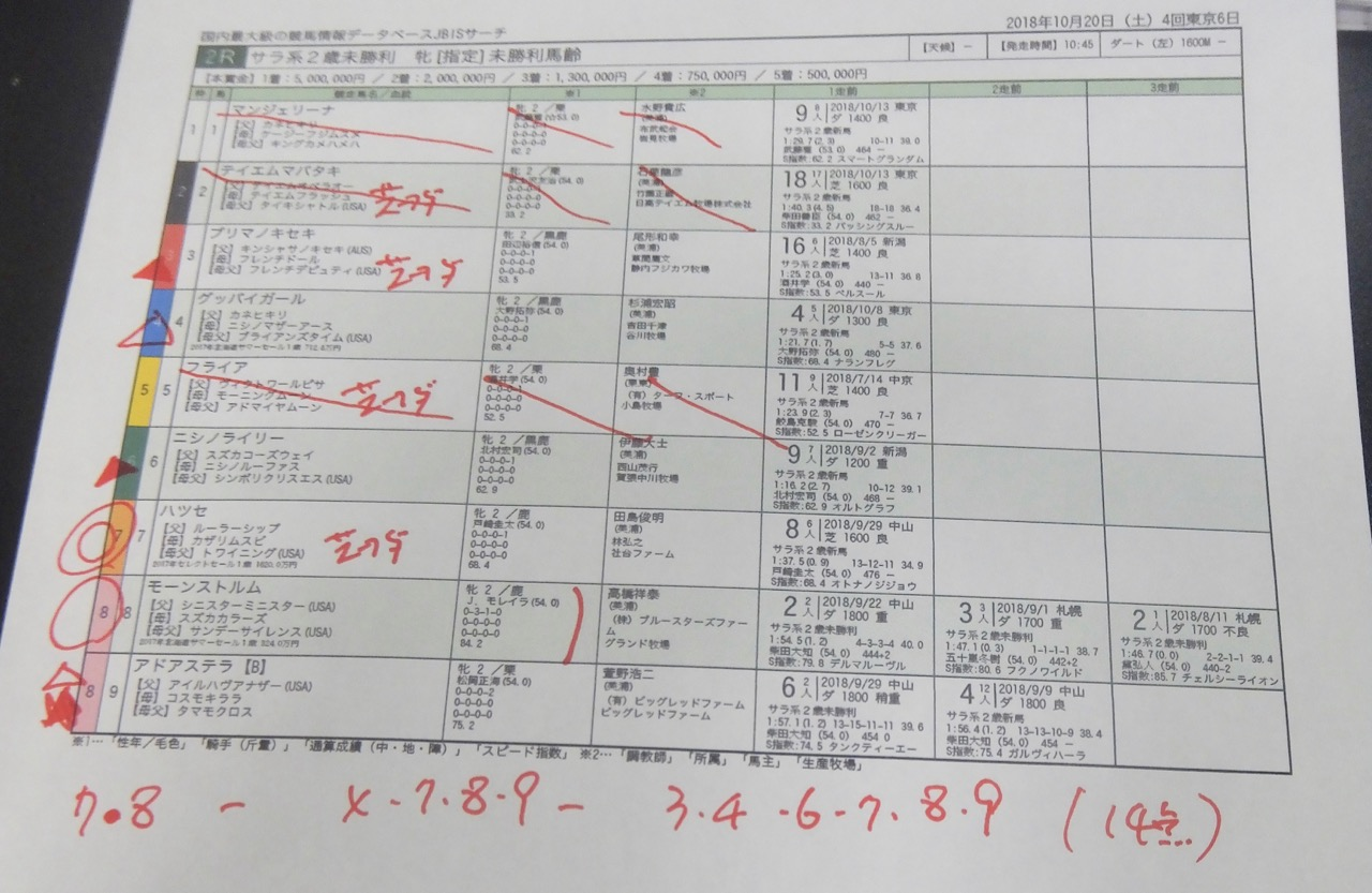 東京2レース、2歳未勝利(ダート1600m)競馬予想。馬券本命、ルーラーシップ産駒ハツセ(戸崎圭太騎手、田島俊明厩舎)2018.10.20