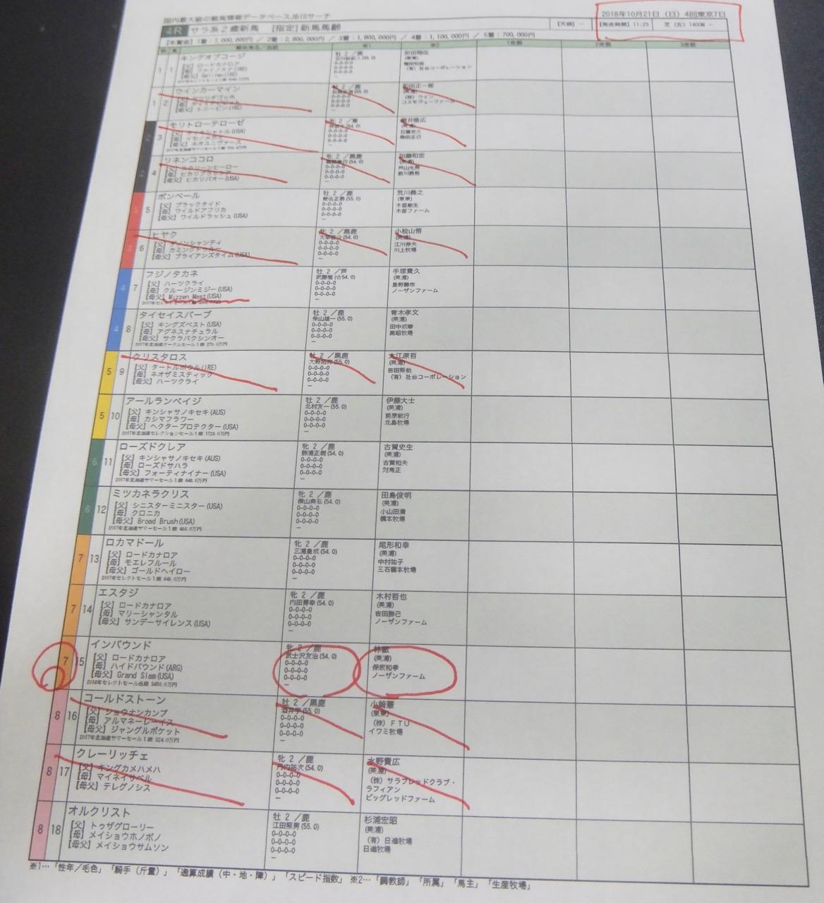 東京4レース、2歳新馬戦(芝1400m)競馬予想。馬券本命、ロードカナロア産駒インバウンド(武士沢友治騎手、林徹厩舎)2018.10.21