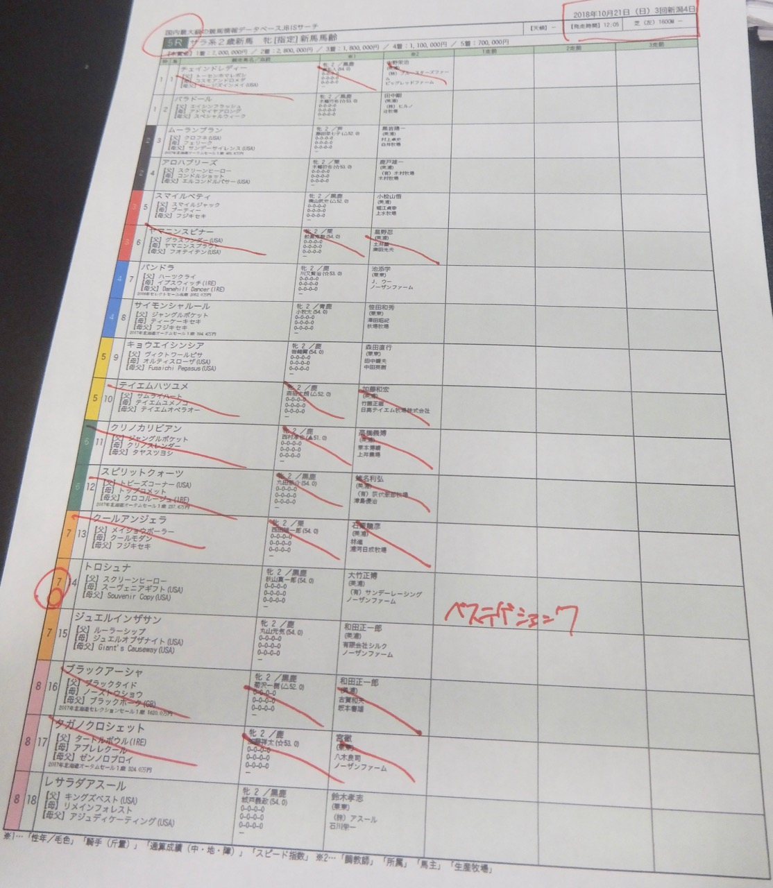新潟5レース、2歳新馬戦(芝1600m)競馬予想。馬券本命、スクリーンヒーロー産駒トロシュナ(秋山真一郎騎手、大竹正博厩舎)2018.10.21