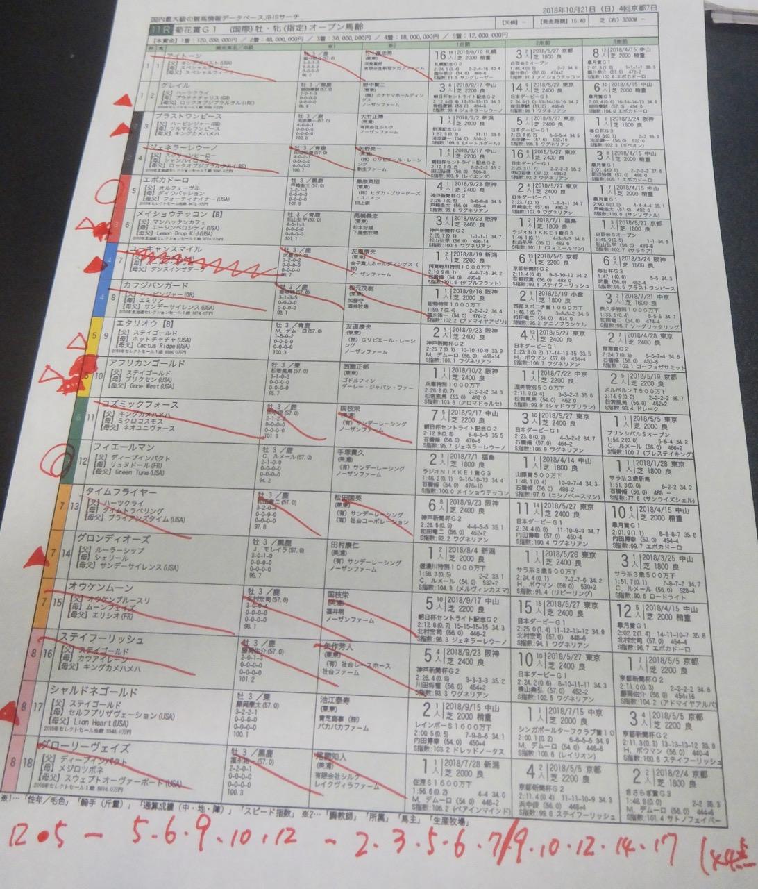京都11レース、GI菊花賞(芝3000m)競馬予想。馬券本命、ディープインパクト産駒フィエールマン(C.ルメール騎手、手塚貴久厩舎)2018.10.21