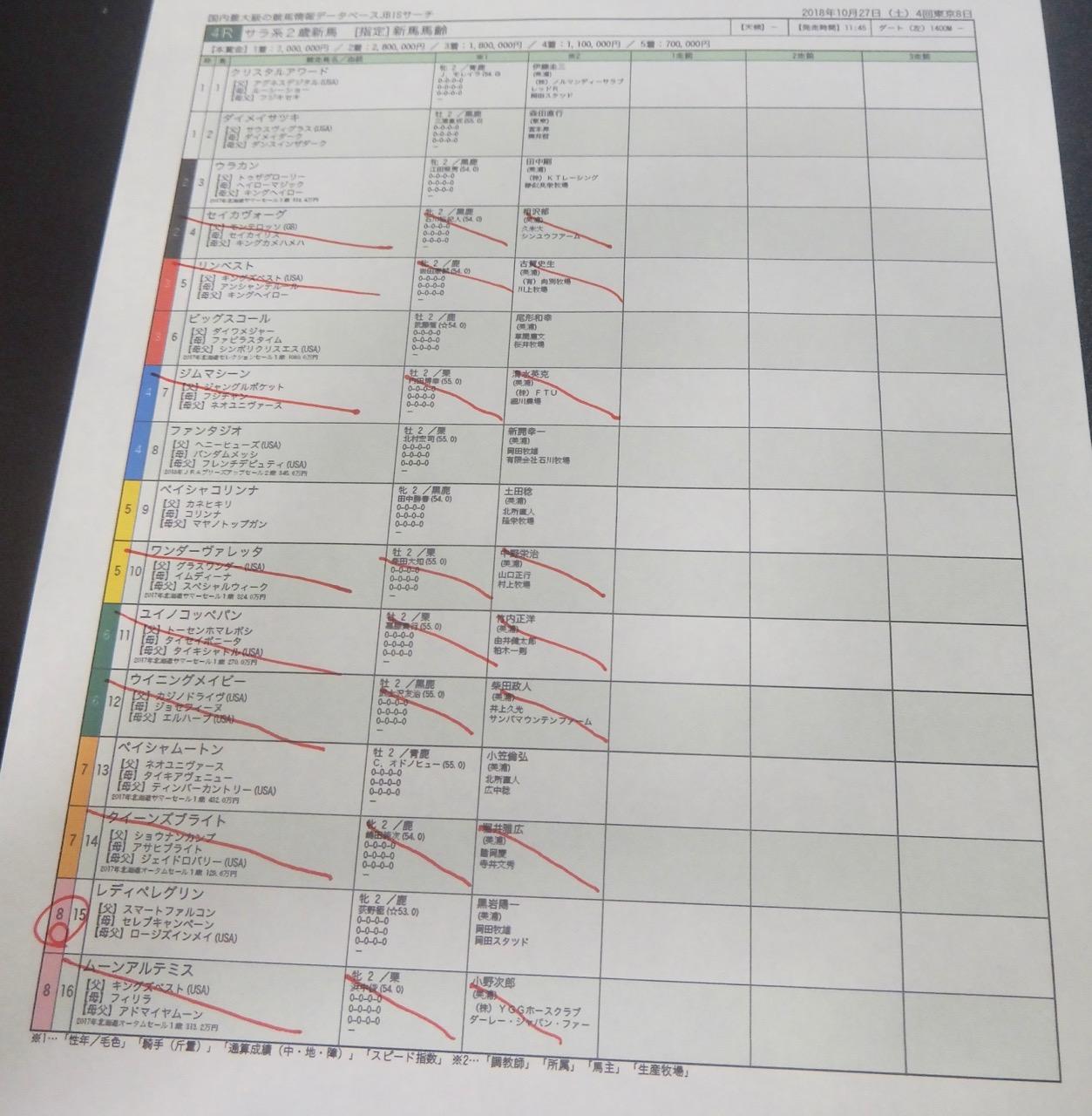 東京4レース、2歳新馬戦(ダート1400m)競馬予想。馬券本命、スマートファルコン産駒レディペレグリン(荻野極騎手、黒岩陽一厩舎)2018.10.27
