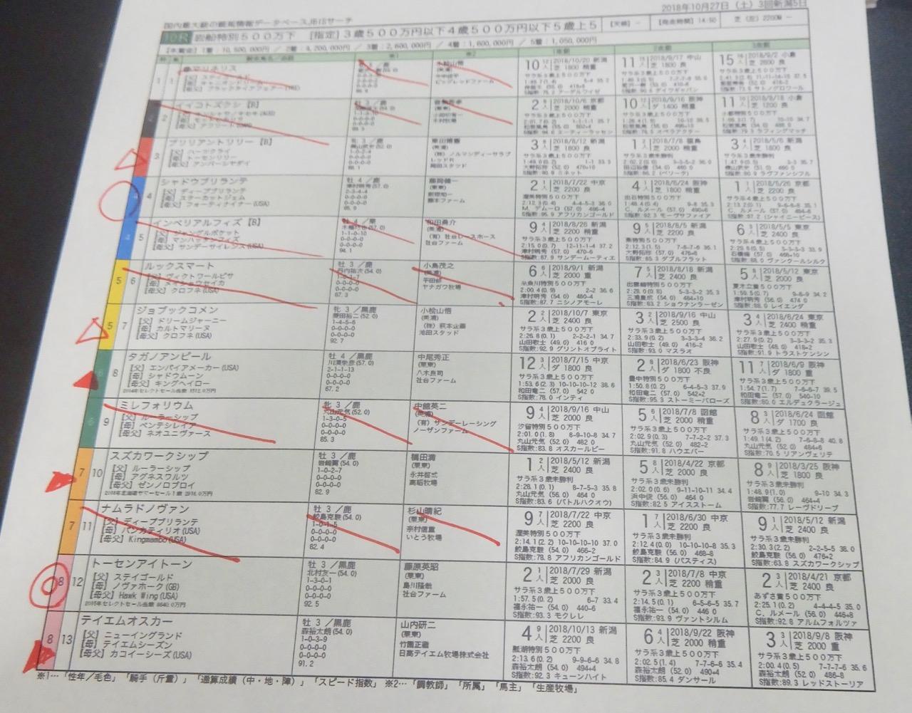 新潟10レース、岩船特別(芝2200m)競馬予想。馬券本命、ステイゴールド産駒トーセンアイトーン(北村友一騎手、藤原英昭厩舎)2018.10.27