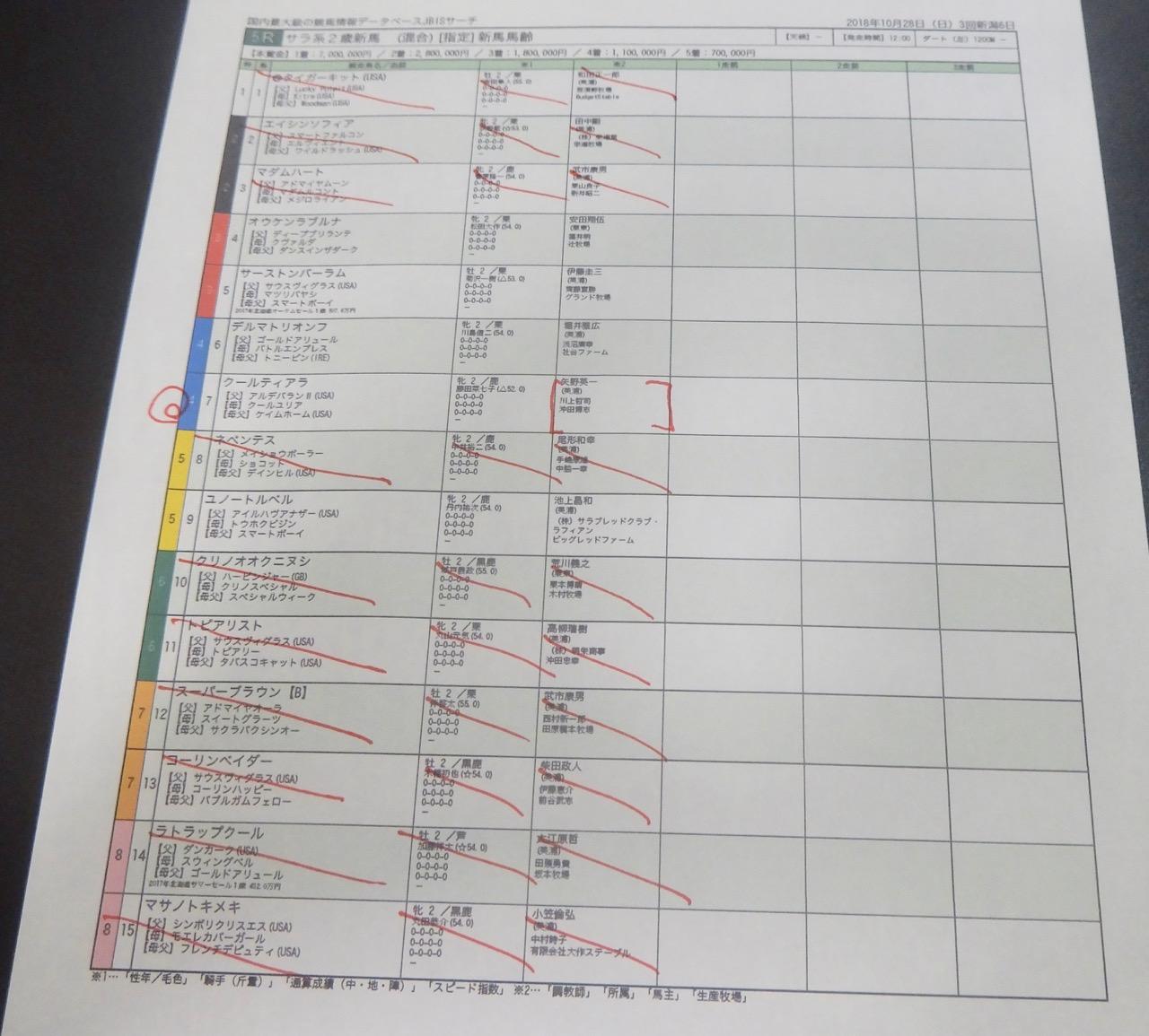 新潟5レース、2歳新馬戦(ダート1200m)競馬予想。馬券本命、アルデバランII産駒クールティアラ(藤田菜七子騎手、矢野英一厩舎)2018.10.28