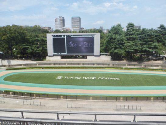 アイビスサマーダッシュ2017競馬予想【過去の結果データからレース映像傾向分析】