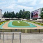 札幌2歳ステークス2019競馬予想に。過去の結果から1〜3着馬の前走データをレース映像分析【傾向・追い切り・オッズ】