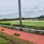 関屋記念2019競馬予想に。過去の結果から1〜3着馬の前走データをレース映像分析【傾向・追い切り・オッズ】