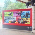 京成杯オータムハンデキャップ2019競馬予想に。過去の結果から1〜3着馬の前走データをレース映像分析【傾向・追い切り・オッズ】