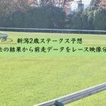 新潟2歳ステークス予想。過去の結果から前走データをレース映像分析