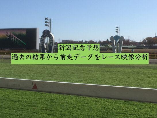 新潟記念予想。過去の結果から前走データをレース映像分析