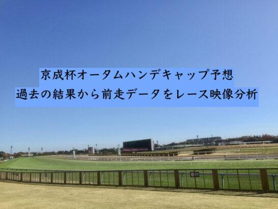 京成杯オータムハンデキャップ予想。過去の結果から前走データをレース映像分析