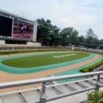 府中牝馬ステークス2019競馬予想に。過去の結果から1〜3着馬の前走データをレース映像分析【傾向・追い切り・オッズ】