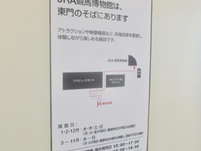 函館2歳ステークス2020競馬予想に。過去の結果から1〜3着馬の前走データをレース映像分析【傾向・追い切り・オッズ】