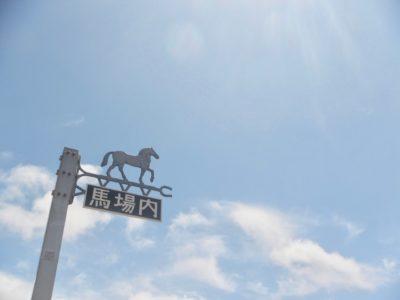 京都記念2020競馬予想に。過去の結果から1〜3着馬の前走データをレース映像分析【傾向・追い切り・オッズ】