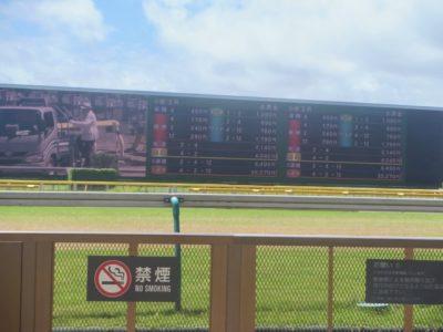 ダイヤモンドステークス2020競馬予想に。過去の結果から1〜3着馬の前走データをレース映像分析【傾向・追い切り・オッズ】