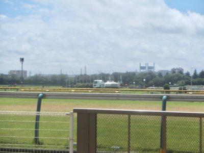 プロキオンステークス2020競馬予想に。過去の結果から1〜3着馬の前走データをレース映像分析【傾向・追い切り・オッズ】