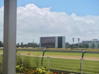 七夕賞2020競馬予想に。過去の結果から1〜3着馬の前走データをレース映像分析【傾向・追い切り・オッズ】