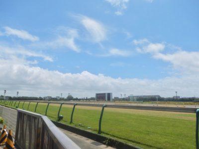 オーシャンステークス2020競馬予想に。過去の結果から1〜3着馬の前走データをレース映像分析【傾向・追い切り・オッズ】