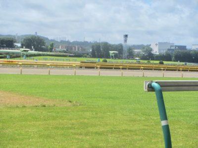 宝塚記念2020競馬予想に。過去の結果から1〜3着馬の前走データをレース映像分析【傾向・追い切り・オッズ】