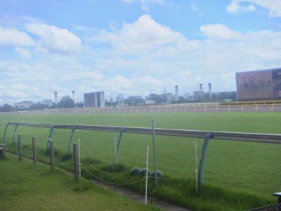 葵ステークス2020競馬予想に。過去の結果から1〜3着馬の前走データをレース映像分析【傾向・追い切り・オッズ】