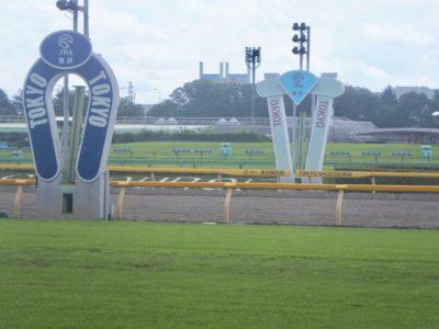 ヴィクトリアマイル2020競馬予想に。過去の結果から1〜3着馬の前走データをレース映像分析【傾向・追い切り・オッズ】