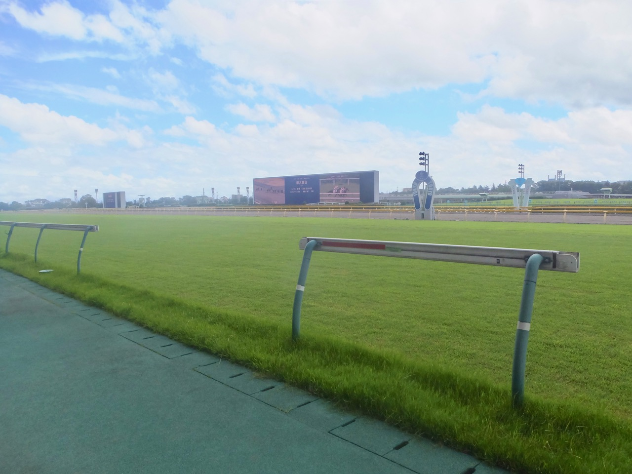 NHKマイルカップ2020競馬予想に。過去の結果から1〜3着馬の前走データをレース映像分析【傾向・追い切り・オッズ】