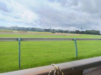 京都新聞杯2020競馬予想に。過去の結果から1〜3着馬の前走データをレース映像分析【傾向・追い切り・オッズ】