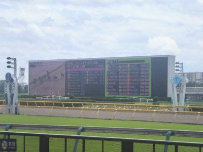 天皇賞春2020競馬予想に。過去の結果から1〜3着馬の前走データをレース映像分析【傾向・追い切り・オッズ】