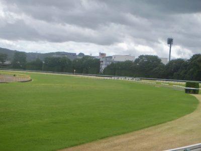 福島牝馬ステークス2020競馬予想に。過去の結果から1〜3着馬の前走データをレース映像分析【傾向・追い切り・オッズ】