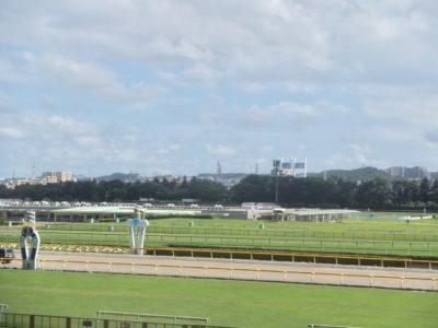 高松宮記念2020競馬予想に。過去の結果から1〜3着馬の前走データをレース映像分析【傾向・追い切り・オッズ】