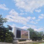 阪神大賞典2020競馬予想に。過去の結果から1〜3着馬の前走データをレース映像分析【傾向・追い切り・オッズ】