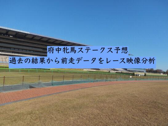 府中牝馬ステークス予想。過去の結果から前走データをレース映像分析