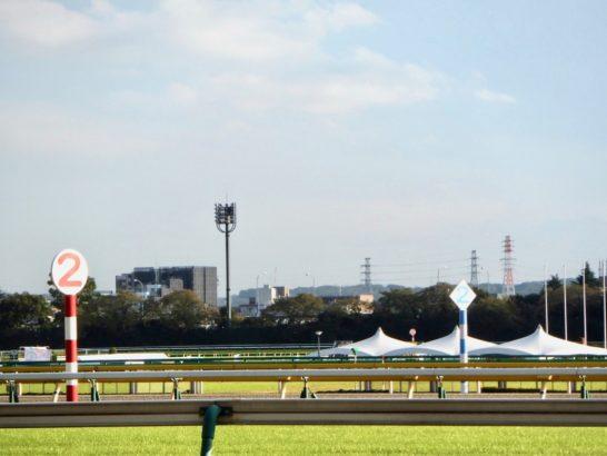 東京スポーツ杯2歳ステークス2017【過去の結果データからレース映像傾向分析】