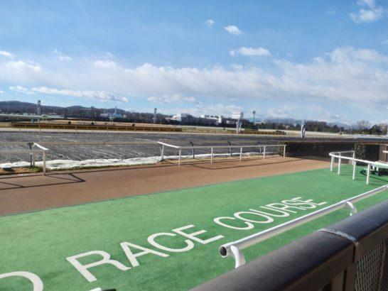 京都2歳ステークス2018・1着・クラージュゲリエ【過去データ】(オッズ・1番人気。血統・キングカメハメハ産駒)