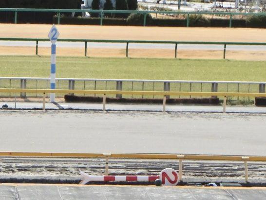 東京スポーツ杯2歳ステークス2016・1着・ブレスジャーニー【過去データ】(オッズ・2番人気。血統・バトルプラン産駒)