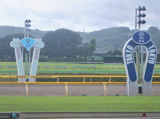 東京スポーツ杯2歳ステークス2018・2着・アガラス【過去データ】(オッズ・7番人気。血統・ブラックタイド産駒)