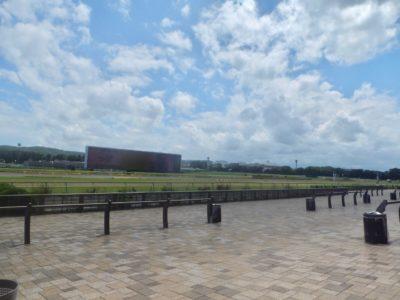 日経新春杯2020競馬予想に。過去の結果から1〜3着馬の前走データをレース映像分析【傾向・追い切り・オッズ】